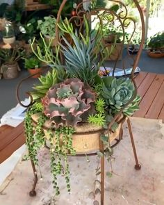 For how-to's, tips and tricks, and inspiration on all things succulents. check out our website for some helpful articles to encourage you to be the best succulent gardener! video garden oooooh, this DIY chair planter is awesome for succulents! Garden Yard Ideas, Garden Crafts, Diy Garden Decor, Garden Projects, Garden Art, Garden Design, Garden Types, Backyard Ideas, Outdoor Projects