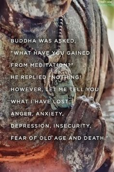 Fran Aslam - Google+ - Buddha was asked, what have you gained from meditation? He…