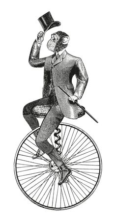 Victorian Illustration, Engraving Illustration, Gravure Illustration, Illustration Art, Art Sketches, Art Drawings, Art Zen, Bild Tattoos, Bike Art