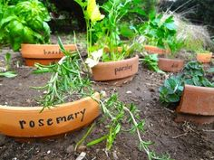 Use Broken Pots As Garden Markers
