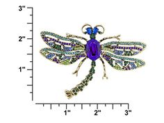 Off Park Collection (Tm) Antique Gold Tone Multicolor Crystal Dragonfly Pendant Brooch With Chain