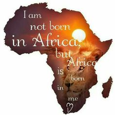 Born in NAMIBIA, lived for over 20 years in Cape Town.....