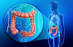 Your colon controls more functions in your body than you may realize. Find out why this vital organ may be secretly killing you.