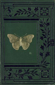 This book had no words on the cover, just a gilt embossed moth set around a border of some flowering grass's silhouette. The inside was equally empty, it's only instruction a quill of fine painted ostrich plumes waiting expectant of some use in the bottom corner.