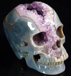 Gorgeous earth skull