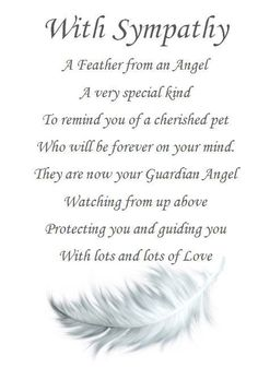 PET SYMPATHY CARD with poignant verse and feather keepsake. Can be Personalised