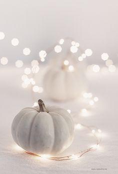 white pumpkin & twin