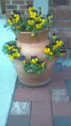Pancies in strawberry pot Strawberry Planters, Violets, Yard Art, Accent Colors, Pansies, Beautiful Gardens, Container Gardening, Strawberries, Balcony