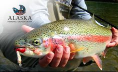 Alaska Fly fishing Trips
