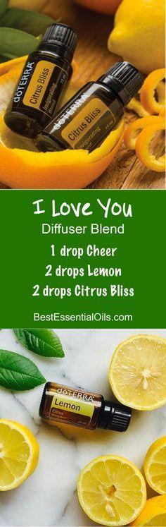 doTERRA Essential Oils I Love You Diffuser Blend