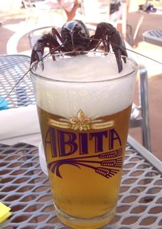 Abita Beer - for parents!
