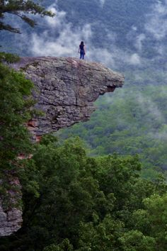 Up In The Clouds on Hawksbill Crag / Whitaker Point in the Ozark Mountains, Arkansas by Jeff Rose