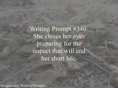 Writing Prompt #340: She closes her eyes preparing for the impact that will end her short life.