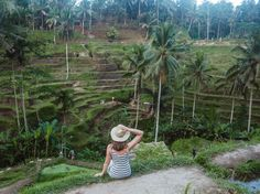 5 Unique Things to do in Ubud - rice fields