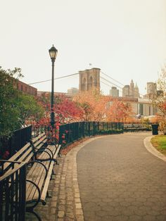 New York City - Autumn in the City - Brooklyn Bridge and Fall Foliage