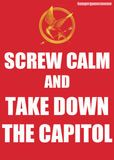 take down the capitol