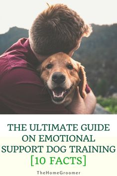 The Ultimate Guide on Emotional Support Dog Training Facts] - Everything You Need to Know about Emotional Support Dog Training… In this quick guide! Service Dog Training, Dog Training Treats, Dog Training Videos, Training Your Puppy, Training Classes, Training Kit, Agility Training, Crate Training, Dog Agility