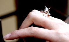 cat ring, i need this!