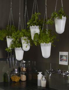 Pendure vasos com ervas aromáticas na sua cozinha
