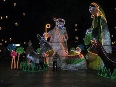 Christmas in Costa Rica • Package Costa Rica