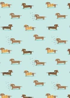 Heather Ross, Munki Munki, WIENER DOGS on Poplin, 1 Sleeve. $7.00, via Etsy.