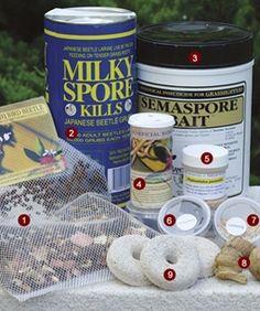Friendly Ways to Battle Garden Pests