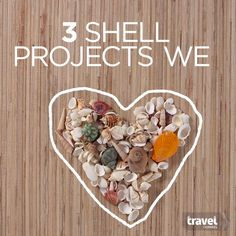 Turn Your Vacation Seashells Into Crafty Keepsakes                              …