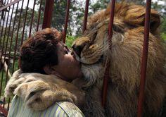 Ana Julia Torres besa a Júpiter, un león rescatado hace 12 años de un circo, en el refugio de Villa Lorena en Cali, Colombia. Ana Julia Torres de 52 años es una profesora y fundó el refugio que protege cerca de 600 animales recuperados de traficantes ilegales de animales y drogas, de circos y del abandono de sus dueños.