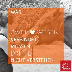 Pferdesprüche & Vitamin e Pferd-emma-pferdefuttershop.de (11)