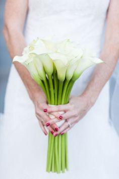 Love the Sleek & Modern look of Calla Lilies <3