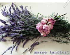 Lavender & roses...