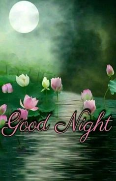 We send good night images to our friends before sleeping at night. If you are also searching for Good Night Images and Good Night Quotes. Good Night I Love You, Good Night Prayer, Good Night Blessings, Good Morning Good Night, Night Quotes Thoughts, Good Night Quotes Images, Good Night Messages, Beautiful Good Night Quotes, Romantic Good Night