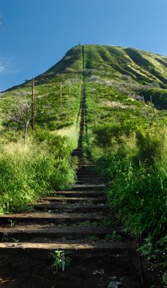 Koko Crater on Oahu, Hi, is a killer hike with awesome views of the island from the top.  The hike is straight up a neverending railroad track type staircase and I thought I would die before reaching the top!  I still recommend this torture *er* hike :)