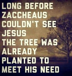 Before Zaccheus couldn't see Jesus the tree was already planted to meet his need... God knows...