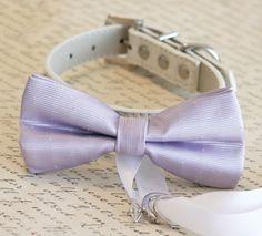 Lavender Dog Bow Tie, Dog ring bearer, Lavender Pet Wedding accessory, Lavender wedding, Proposal idea, Chic