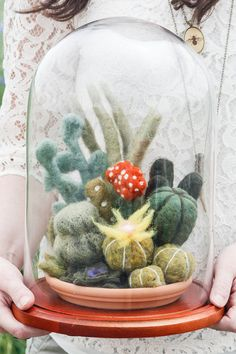 Felted Cactus Garden in Glass Dome Terrarium by OnceAgainSam