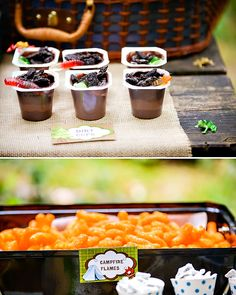 worms in dirt (pudding cup, crushed oreos, and gummy worms), campfire flames (cheese puffs)