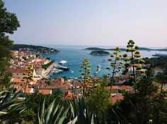 On top of the fortress in Hvar