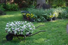 Add a wheelbarrow planter to your garden and create an old-fashioned look to your backyard and home.