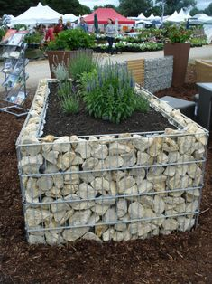 Gabion planer ~i am thinking of making this. Not sure if i really like it, but i think it will be more dog-proof than anything else in my garden...