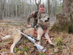 Seeing this picture makes me sick. How this person can smile after killing such beautiful creature, I don't know. How he can live with this guilt him, I don't know. Just because it's not a human does not mean that he is not a creature of God.