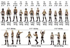Attack on Titan ~~ Stats for characters' heights, weights, and ages. |  I'm in between Reiner and Bert