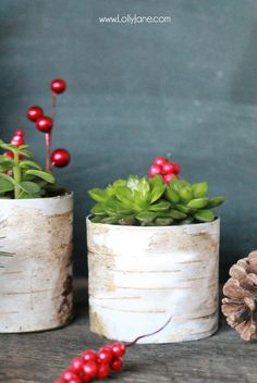 DIY Faux Birch Wood Succulent Planter made from old tin cans and scrapbook paper -cute and inexpensive!