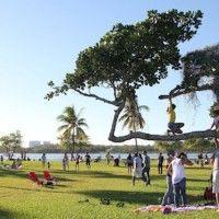 Great Parks in Miami | USA -> http://www.cafeviagem.com/parques-em-miami/