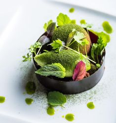 """Summer Herb Sorbet"" dessert by Pastry Chef Stephanie Prida of Manresa Bread featuring Valrhona GUANAJA 70%!"