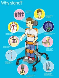 Fun graphic explaining the benefits of using a stander for students with limited mobility. Consult a physical therapist for individual needs and the amount of minutes the student can withstand. Gross Motor Activities, Gross Motor Skills, Therapy Activities, Sensory Activities, Physical Therapist, Physical Education, Special Education, Health Education, Pediatric Occupational Therapy