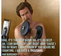 The Ron Burgundy workout. Gym Memes, Gym Humor, Workout Humor, Fitness Humor, Movie Quotes, Funny Quotes, Tv Quotes, Ron Burgundy, Will Ferrell