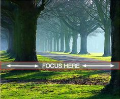 Where to Focus in Landscape Photography - Digital Photography School