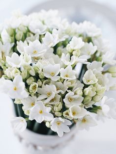 White Day is the day for men to give back to the women that gave them gifts on Valentine's Day.