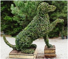 such a pretty sculpture for your garden, especially if you have this breed. Tiying Easter, or Red, White and blue colors of ribbons are so fun when you entertain of Christmas